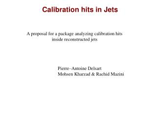 Calibration hits in Jets