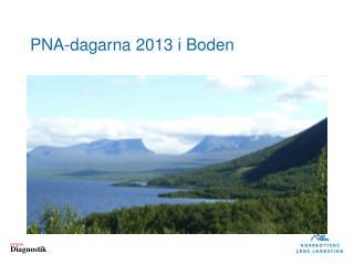 PNA- dagarna  2013  i  Boden