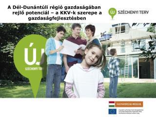 A Dél-Dunántúli régió gazdaságában rejlő potenciál – a KKV-k szerepe a gazdaságfejlesztésben
