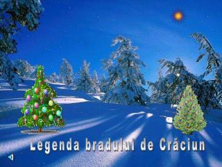 Legenda bradului de Crăciun