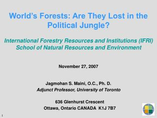 World's Forests: Are They Lost in the Political Jungle?