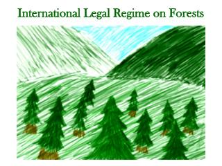 International Legal Regime on Forests