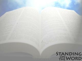 How did our Bible come to be?