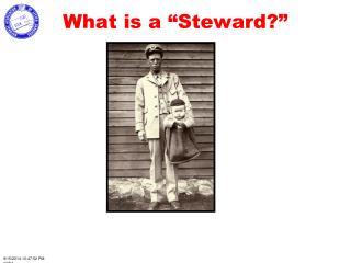 "What is a ""Steward?"""
