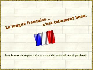 La langue fran aise...     cest tellement beau.