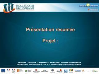 Présentation résumée Projet :