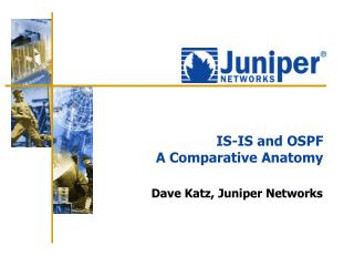 IS-IS and OSPF A Comparative Anatomy