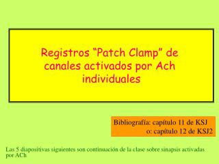 Ach: Patch-clamp