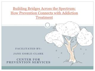 Building Bridges Across the Spectrum:   How Prevention Connects with Addiction Treatment