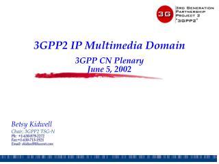 3GPP2 IP Multimedia Domain 3GPP CN Plenary June 5, 2002