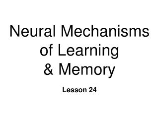 Neural Mechanisms of Learning  & Memory