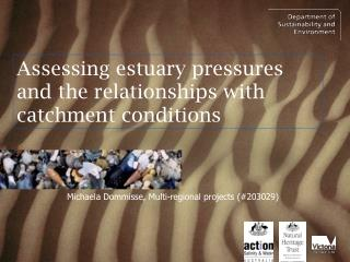 Assessing estuary pressures and the relationships with catchment conditions