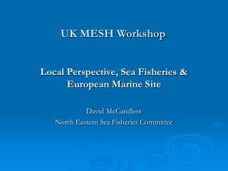 UK MESH Workshop