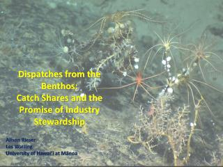 Dispatches from the Benthos:  Catch Shares and the Promise of Industry Stewardship