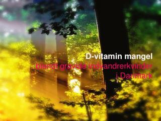 D-vitamin mangel blandt gravide indvandrerkvinder  i Danmark