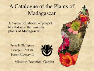 A Catalogue of the Plants of Madagascar