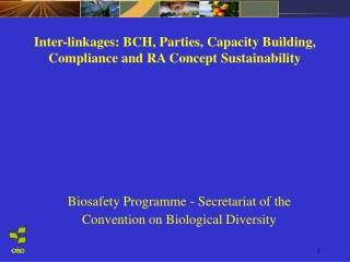 Inter-linkages: BCH, Parties, Capacity Building, Compliance and RA Concept Sustainability