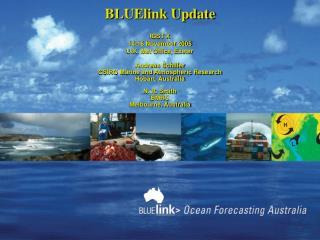 BLUElink Update IGST X 14-16 November 2005 U.K. Met Office, Exeter Andreas Schiller