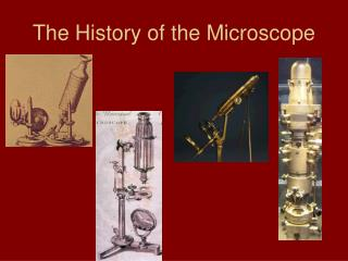 The History of the Microscope