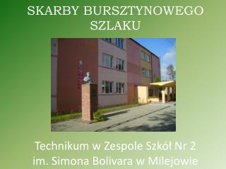 SKARBY BURSZTYNOWEGO SZLAKU Technikum w Zespole Szkół Nr 2  im. Simona Bolivara w Milejowie