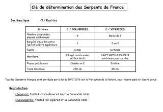 Cl� de d�termination des Serpents de France