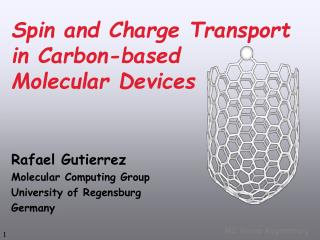 Spin and Charge Transport  in Carbon-based  Molecular Devices