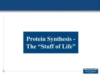 Protein Synthesis -  The �Stuff of Life �