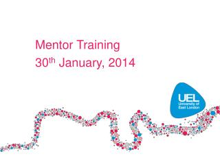 Mentor Training 30 th  January, 2014
