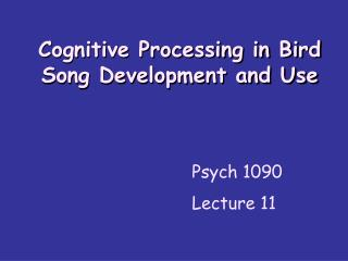 Cognitive Processing in Bird Song Development and Use