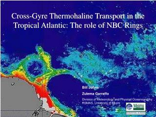 Cross-Gyre Thermohaline Transport in the Tropical Atlantic: The role of NBC Rings