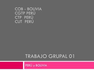 TRABAJO GRUPAL 01