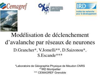 Modélisation de déclenchement d'avalanche par réseaux de neurones