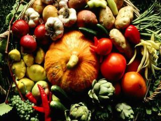 Zasady prawidłowego żywienia i wady żywieniowe