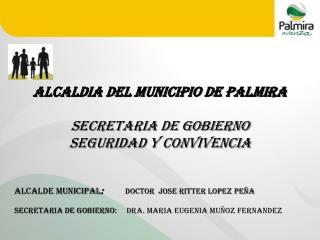 ALCALDIA DEL MUNICIPIO DE PALMIRA SECRETARIA DE GOBIERNO  SEGURIDAD Y CONVIVENCIA