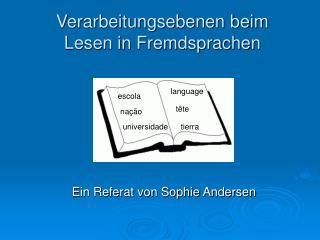 Verarbeitungsebenen beim Lesen in Fremdsprachen