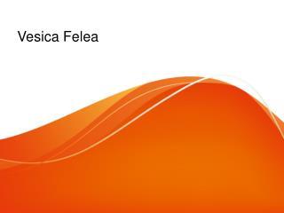 Vesica Felea