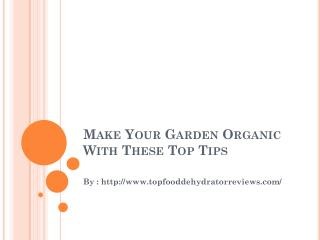 Make Your Garden Organic With These Top Tips