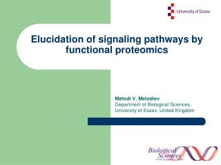 Elucidation of signaling pathways by functional proteomics