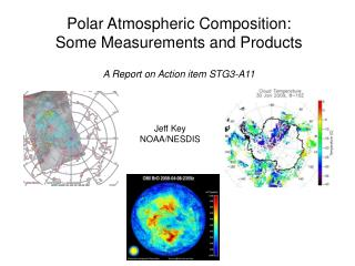 Polar Atmospheric Composition:  Some Measurements and Products A Report on Action item STG3-A11