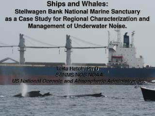 Ships and Whales: Stellwagen  Bank National Marine Sanctuary