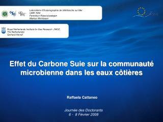 Effet du Carbone Suie sur la communauté microbienne dans les eaux côtières