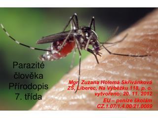 Parazité člověka Přírodopis  7. třída