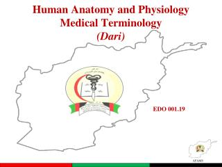 Human Anatomy and Physiology Medical Terminology (Dari)