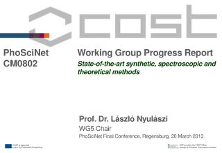 Working Group Progress Report State-of-the-art synthetic, spectroscopic and theoretical methods