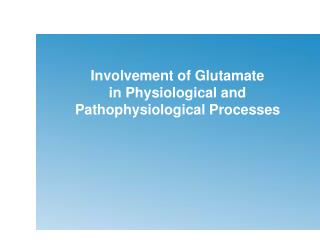 Involvement of Glutamate  in Physiological and Pathophysiological Processes