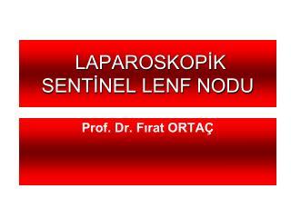 LAPAROSKOPİK SENTİNEL LENF NODU