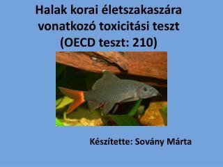Halak korai életszakaszára vonatkozó toxicitási teszt (OECD teszt: 210)