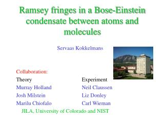 Ramsey fringes in a Bose-Einstein condensate between atoms and molecules
