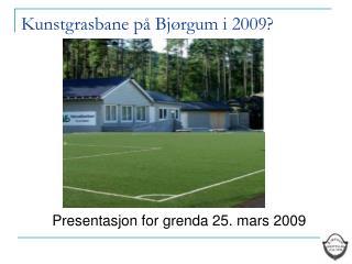 Kunstgrasbane p� Bj�rgum i 2009?