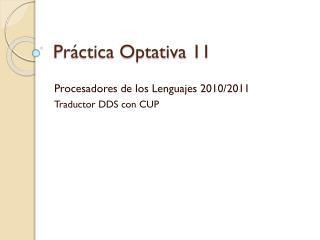 Práctica Optativa 11
